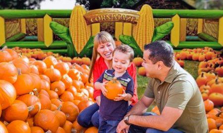 pumpkinfest-toronto
